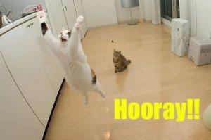 hooray
