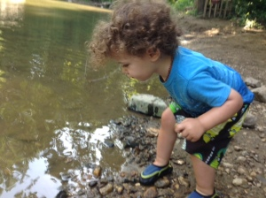 All he wanted to do today was throw rocks from the shore into the water.